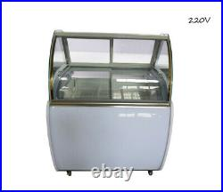 220V Commercial Popsicle Display Cabinet 48 Ice Cream Showcase with LED Light