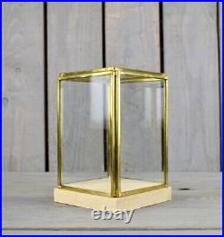 Glass and Brass Display Showcase Box Dome with Wooden Base Tall 17.5 cm