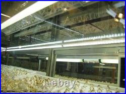 Jewelry Showcase Display LED Light 4x 20 inch V5630 With UL POWER SUPPLY