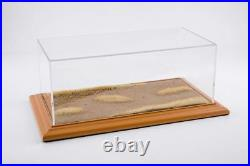 Showcase Display Case Desert Road Diorama Cherry Wood Hand Made For 118/124